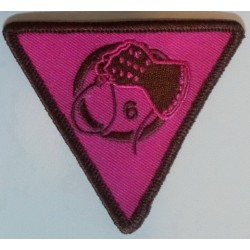 Patch - Pink Triangle - Totenkopf6 or Whiphand6